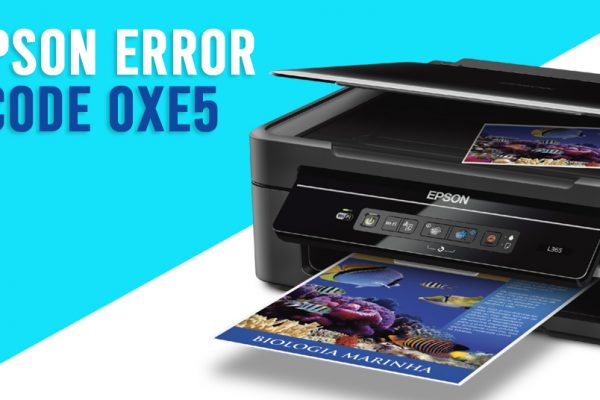 Epson Printer Error 0XE5