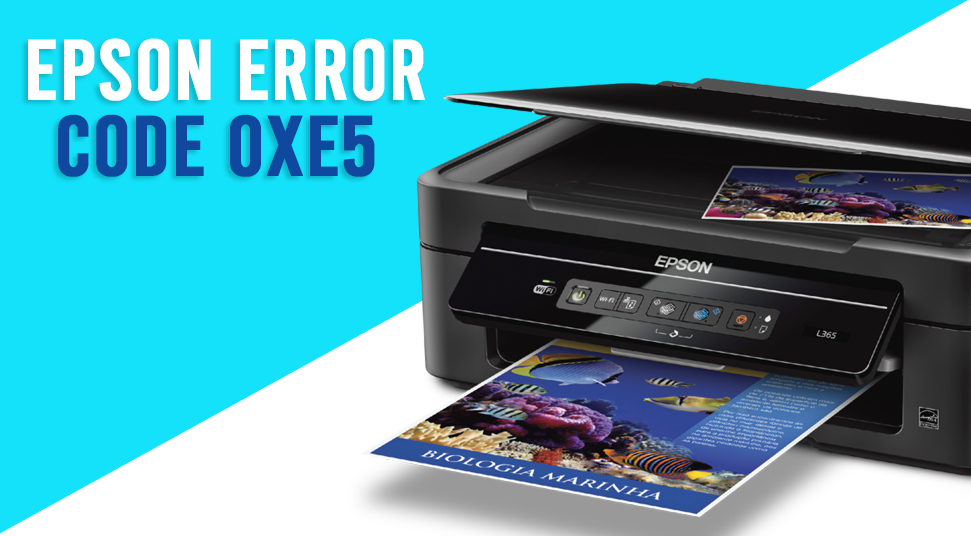 Epson Printer Error 0XE5